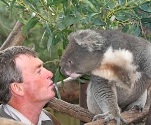 koala-and-peter